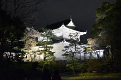 Schloss Nijo bei Nacht