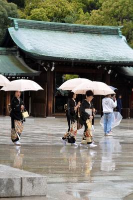 Regen am Meiji-Schrein