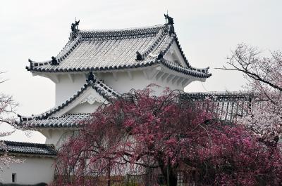 Einer der Türme im Schloss Himeji