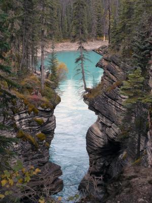 Athabasca River vor dem Wasserfall