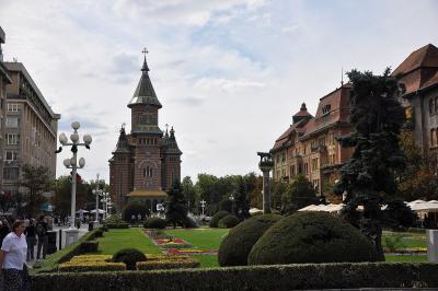 Zentraler Platz in Timișoara