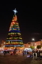 Weihnachtsbaum in Morelia